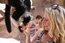 tina and lemur resized